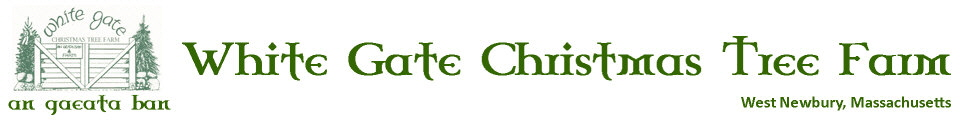 White Gate Christmas Tree Farm | 28 Ash Street | West Newbury, MA 01985 | (978) 363-2224